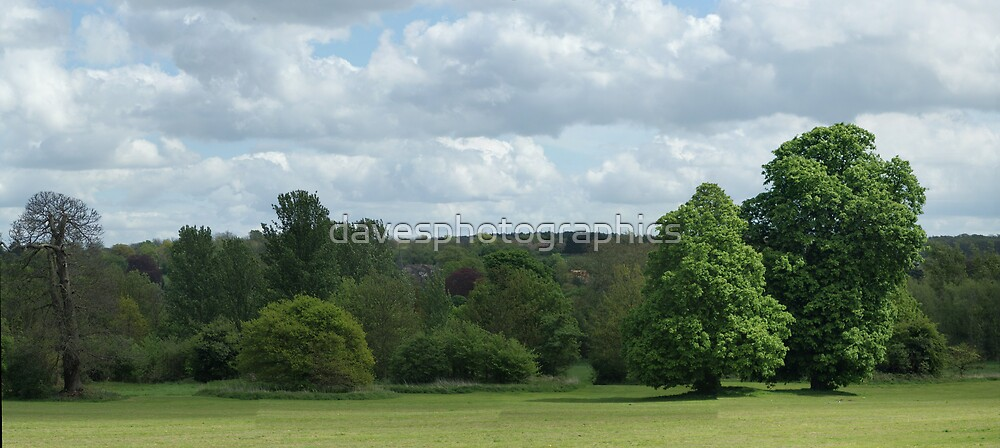 Country Pano by davesphotographics
