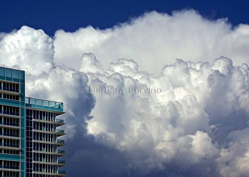 Top floors by Barbara  Corvino