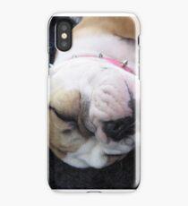 Bulldog Puppy iPhone Case