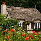 Little Cottage by Teresa Zieba