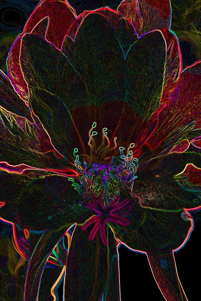 Glowing Flower by Kathy Pantel