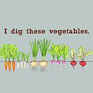 I Dig These Vegetables by Amy McLain