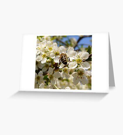 Working Greeting Card