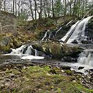 Dead Creek Falls - Overview by Stephen Beattie
