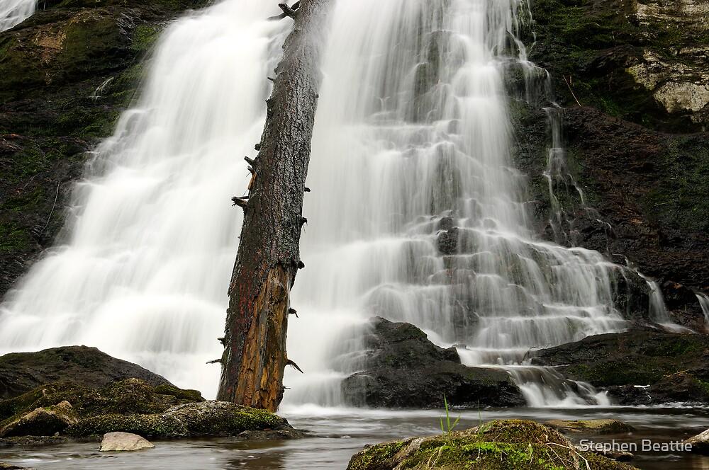 Dead Creek Falls by Stephen Beattie