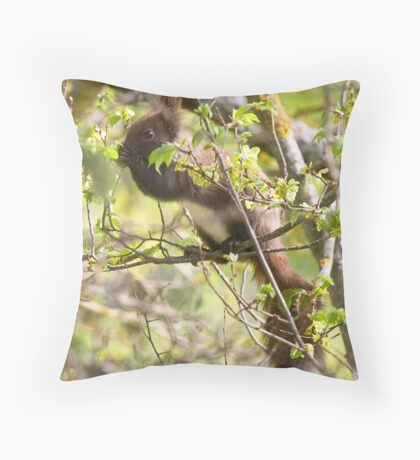 Gupole Red Squirrel 2 Throw Pillow