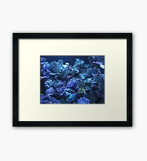 Coral Reef With Fish Framed Print