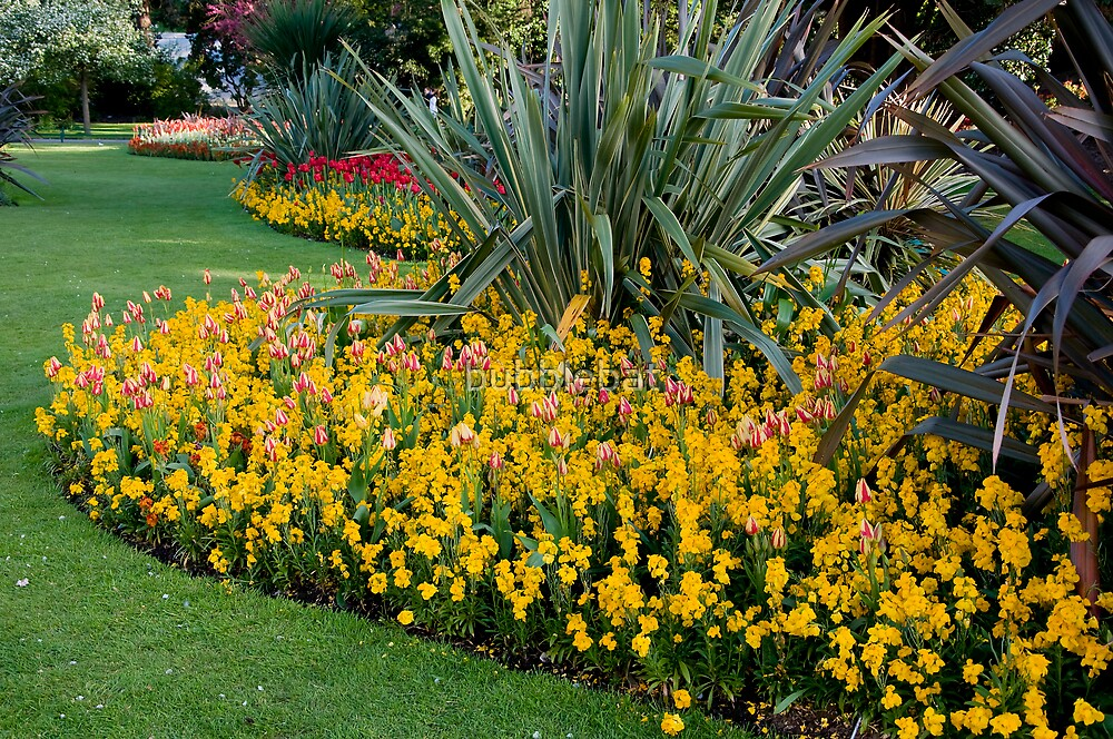 Lower Gardens, Bournemouth 4 by bubblebat