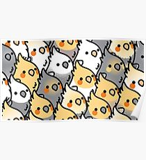 Chubby Cockatiel Party Poster