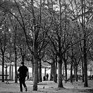 A Walk In the Park, Paris by Steve Rhodes