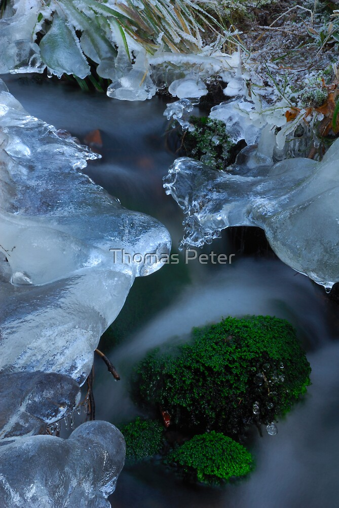 Icy Stream by Thomas Peter