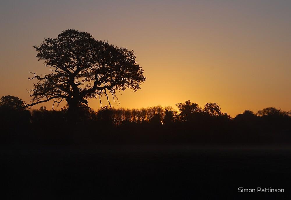 Dawn Silhouette by Simon Pattinson