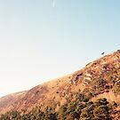 Ireland Glendalough Lake  by Tomasz-Olejnik