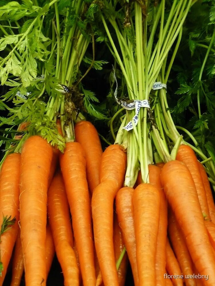 cute As A Carrot by florene welebny