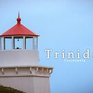 Trinidad Lighthouse by williamsrdan