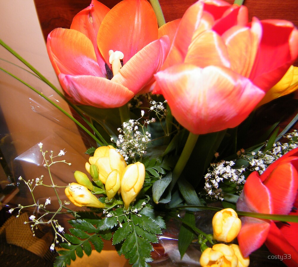 My wife's bouquet by costy33