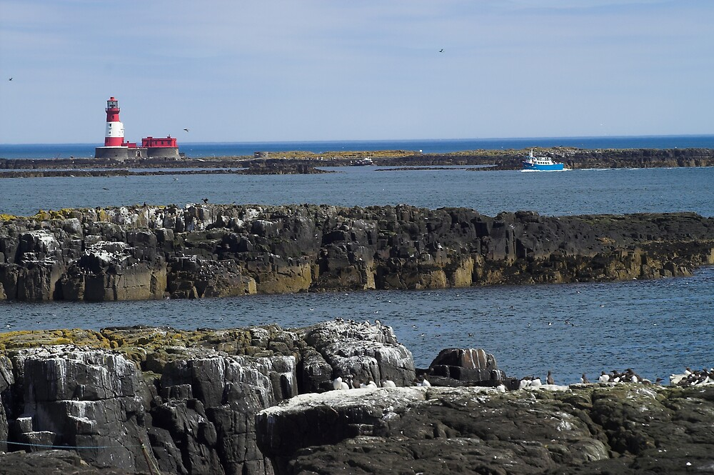 The Farne Islands Red Lighthouse by Melva Vivian