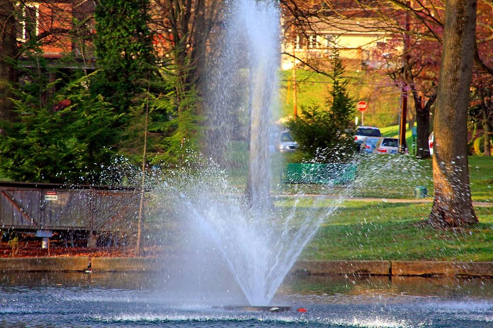 Fountain of Hope by Van Coleman