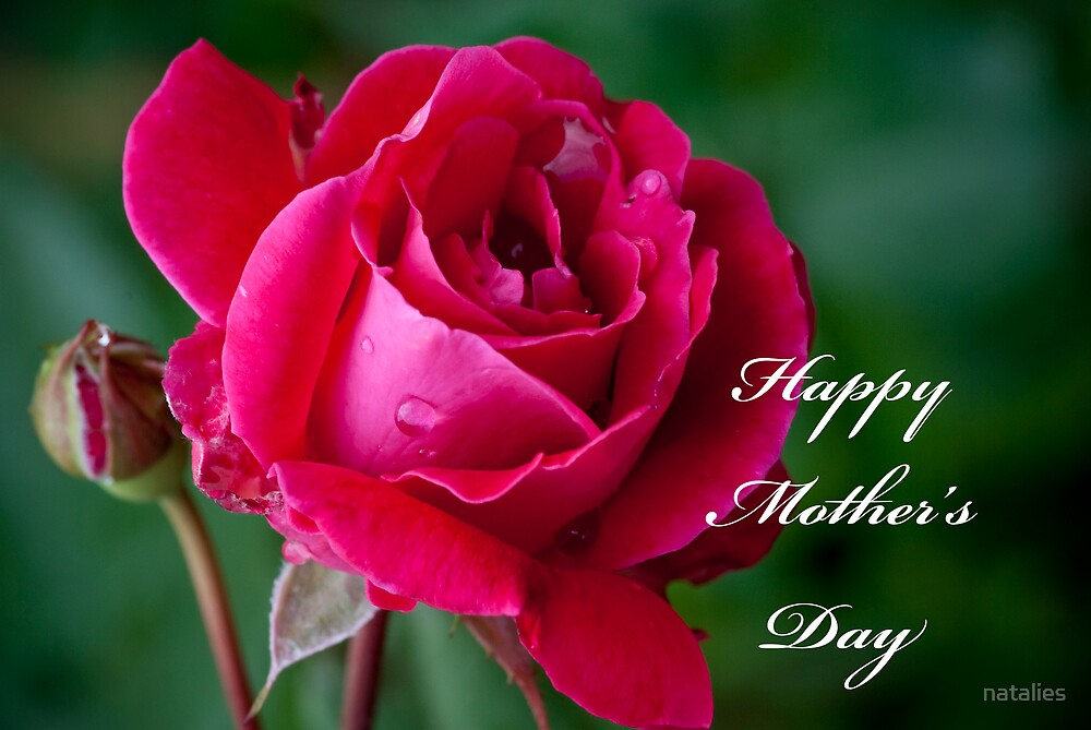Happy Mother's Day by natalies
