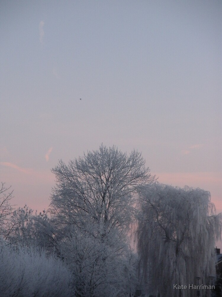 Holland Winter 3 by Kate Harriman