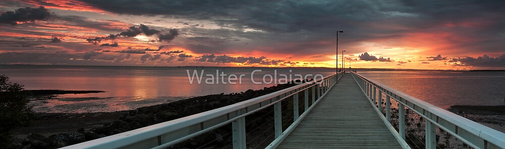 Wellington Panorama by Walter Colaiaco
