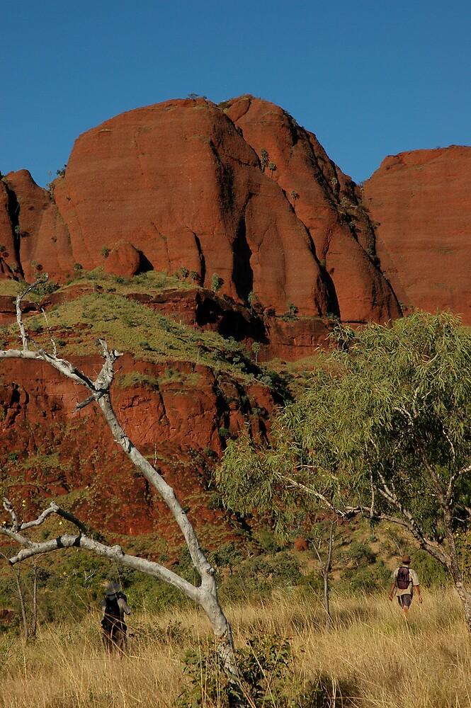 More Ragged Range, WA by Richard  Stanley