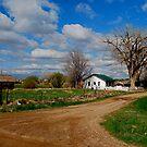 White Picket Fence by Pamela Hubbard