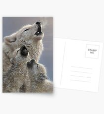 """Howling Wolf Pups """"Singing Lessons"""" Postcards"""