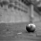apple #3 by Stephen Sheffield