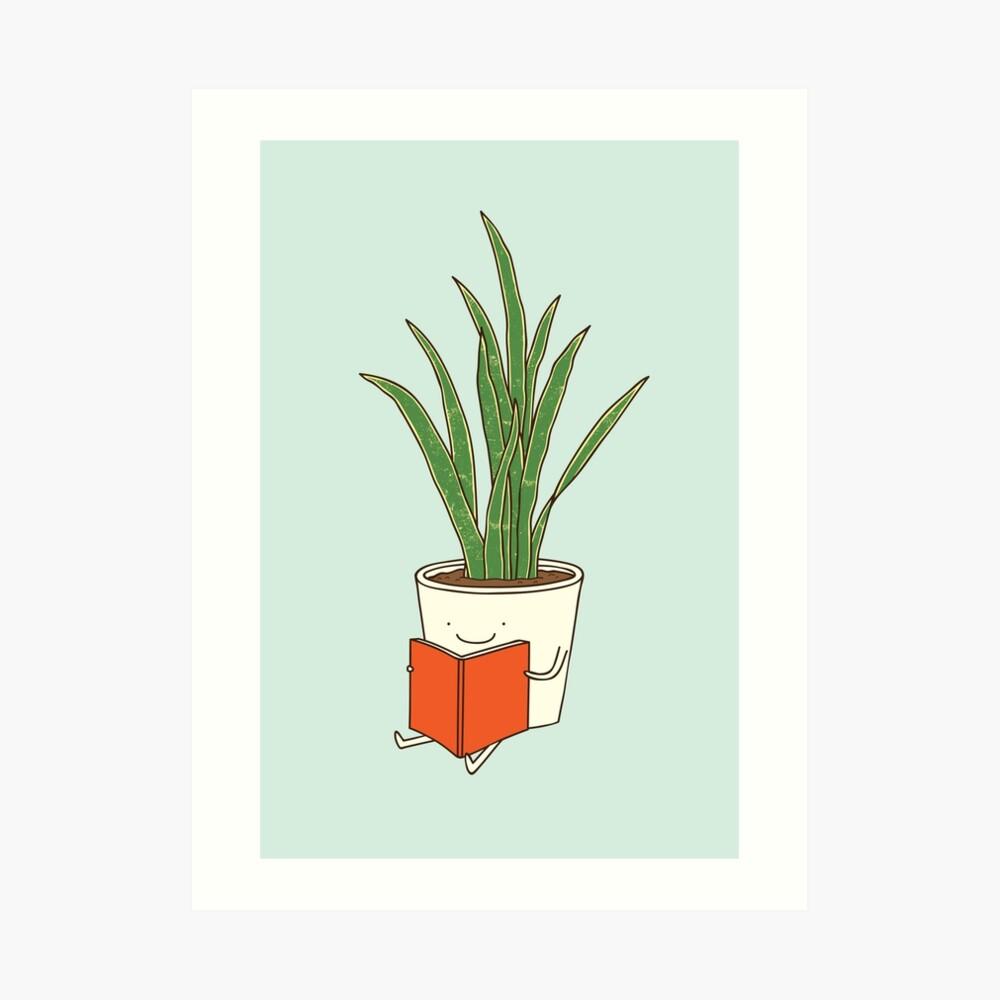 Indoor plant Art Print