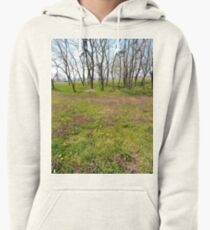 Happiness, Building, Skyscraper, New York, Manhattan, Street, Pedestrians, Cars, Towers, morning, trees, subway, station, Spring, flowers, Brooklyn Pullover Hoodie