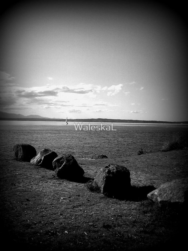 Rocks by WaleskaL