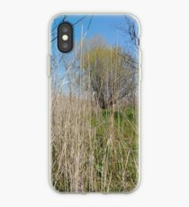 Happiness, Building, Skyscraper, New York, Manhattan, Street, Pedestrians, Cars, Towers, morning, trees, subway, station, Spring, flowers, Brooklyn iPhone Case