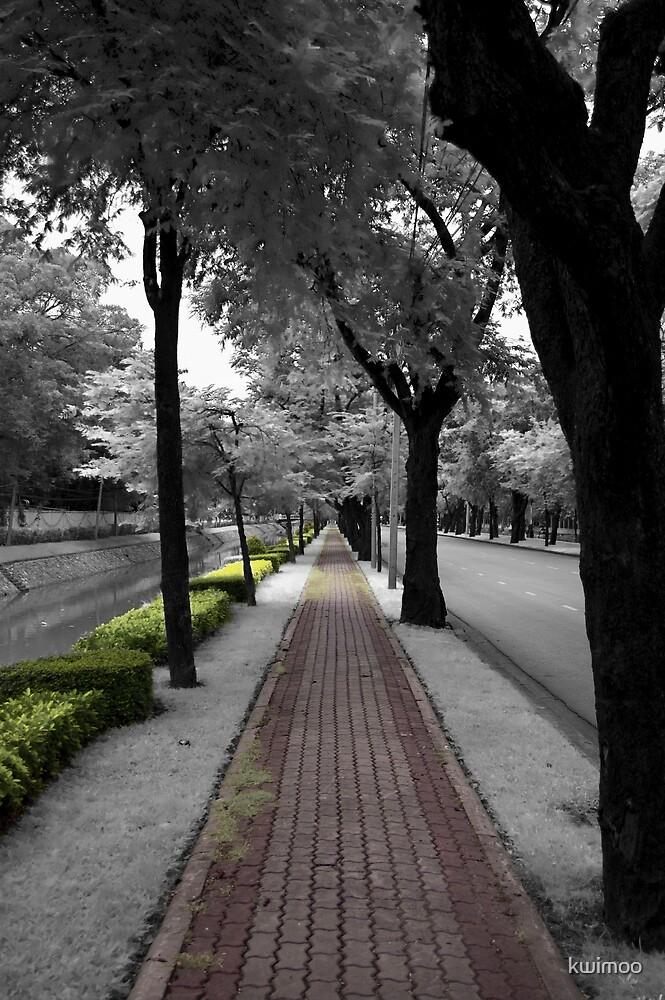 the Path by kwimoo