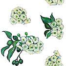 Gum Blossom White by John Klein