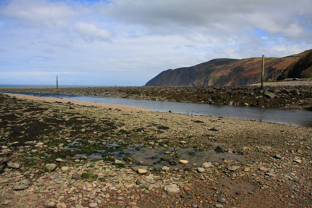 Lynmouth Beach IV by Dave Law