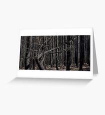 Bushfires 4 Greeting Card