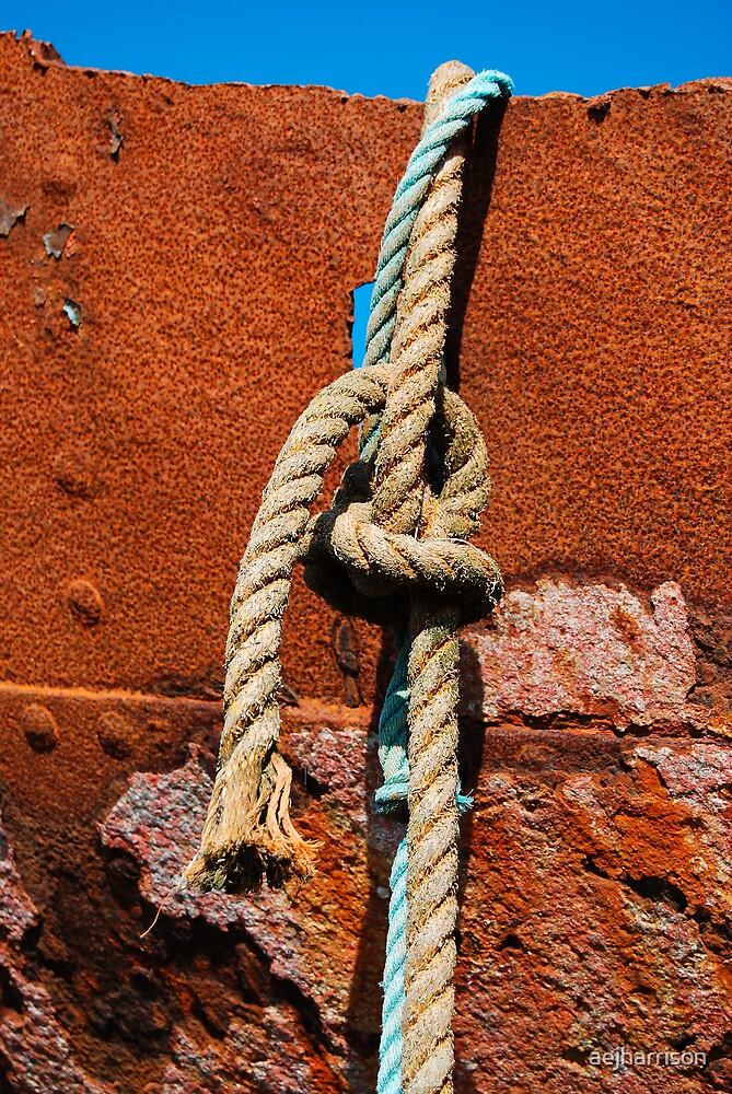 Knot by aejharrison