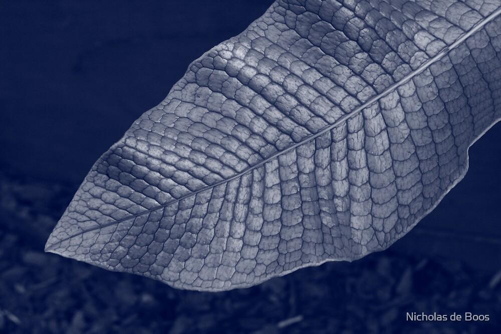 Blue Leaf 2 by Nicholas de Boos