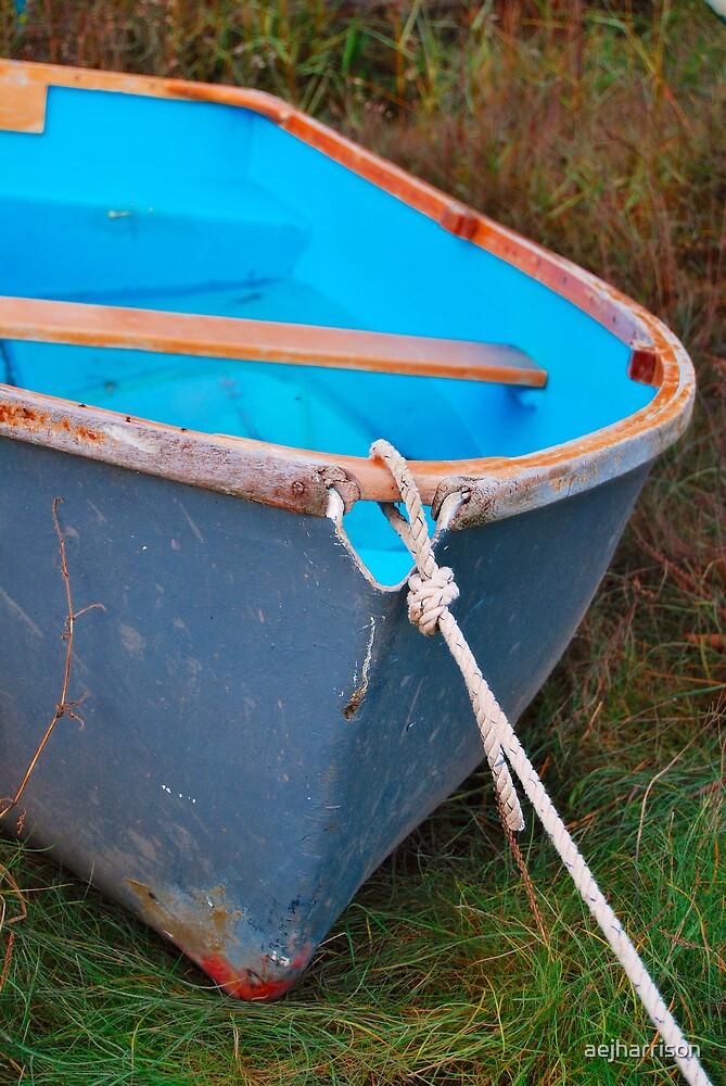 Little Blue Boat by aejharrison