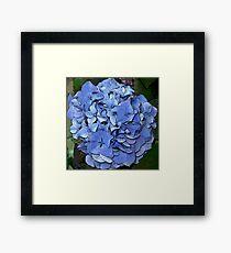 BLUE MONDAY Framed Print
