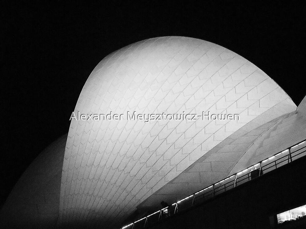 Sydney Opera House sail by Alexander Meysztowicz-Howen