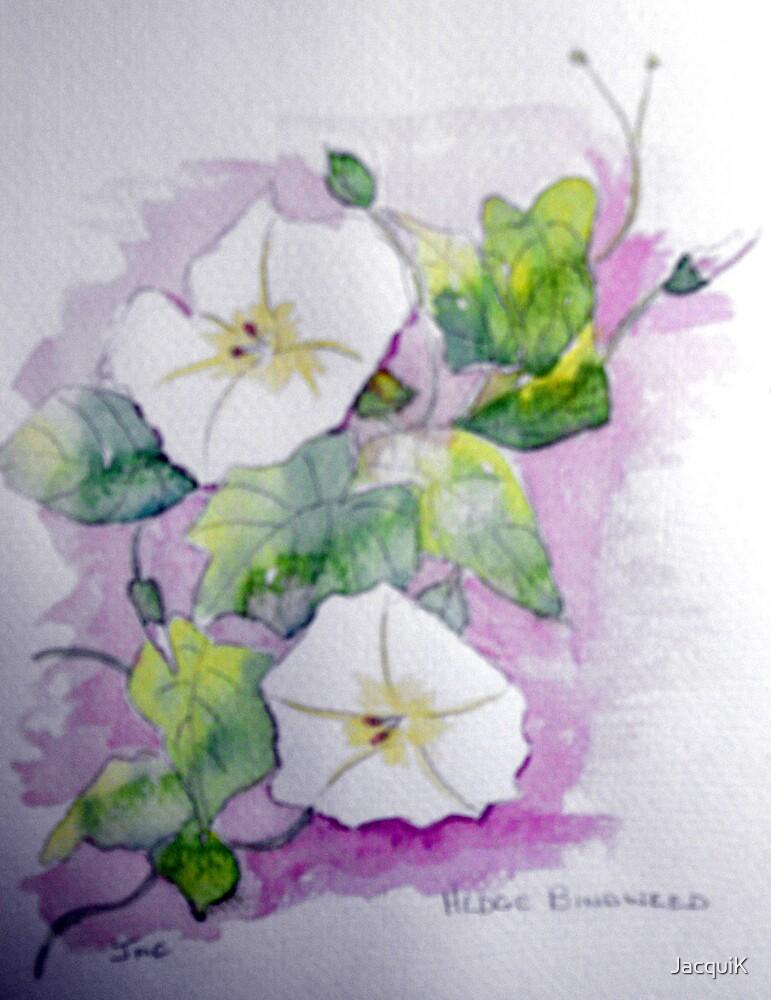 Hedge Bindweed, by JacquiK