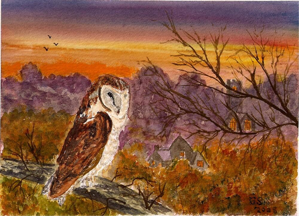 The Barn Owl by GEORGE SANDERSON
