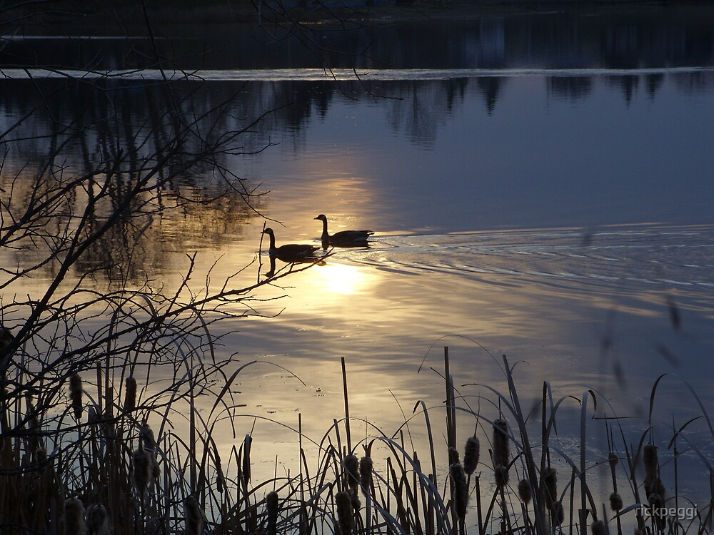 spring sun rises by rickpeggi