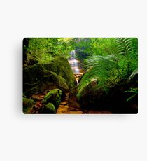 Lawson, New South Wales Canvas Print