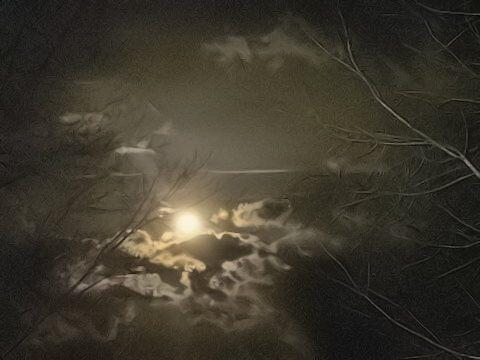 A Dark and Creepy Night... by imajerseygirl