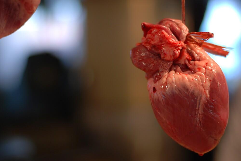 Heart by garretmclarke