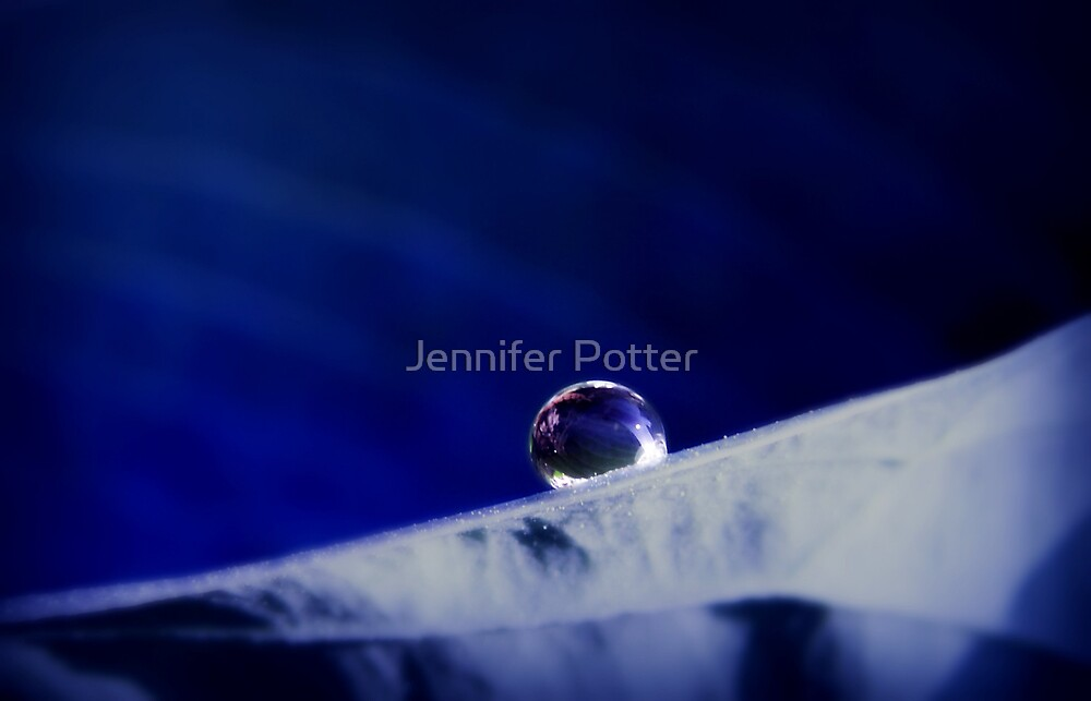 Lonely and Blue by Jennifer Potter
