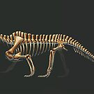 Shringasaurus Indicus Skeleton Study (No Labels) by Thedragonofdoom